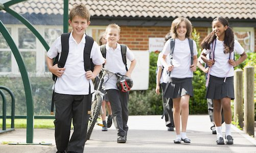 Going Back to School After Head Lice Treatment